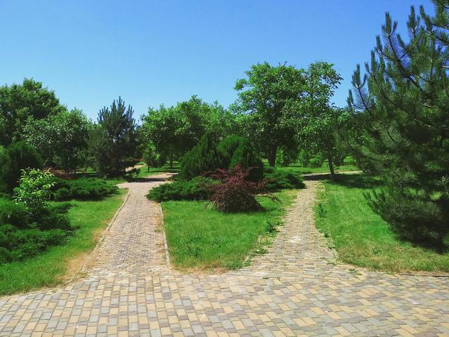 Парк «Ореховая роща»