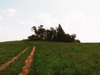 Синеусов курган