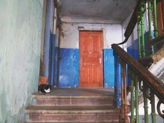 Дом сорока́