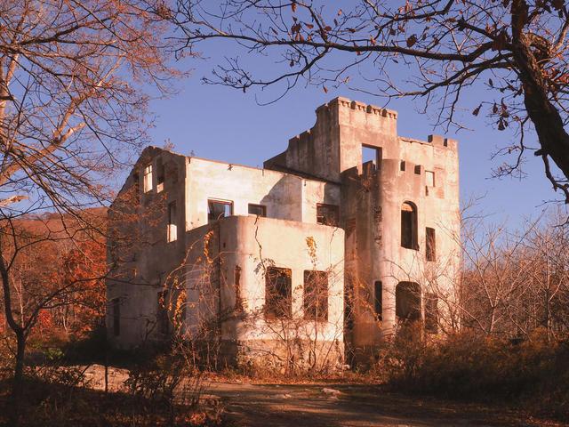 Дом Янковского