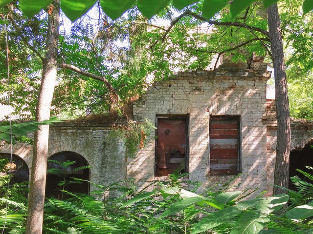Заброшенная дача вдовы генерала Крюкова