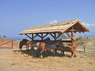 Музей «Атамань»