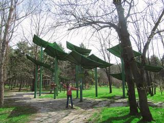 Ботанический сад Багрова (Салгирка)