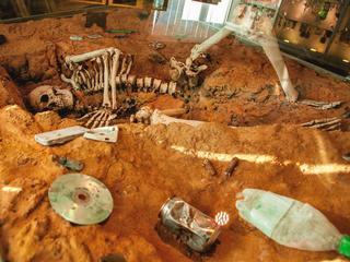 Музей черепов искелетов